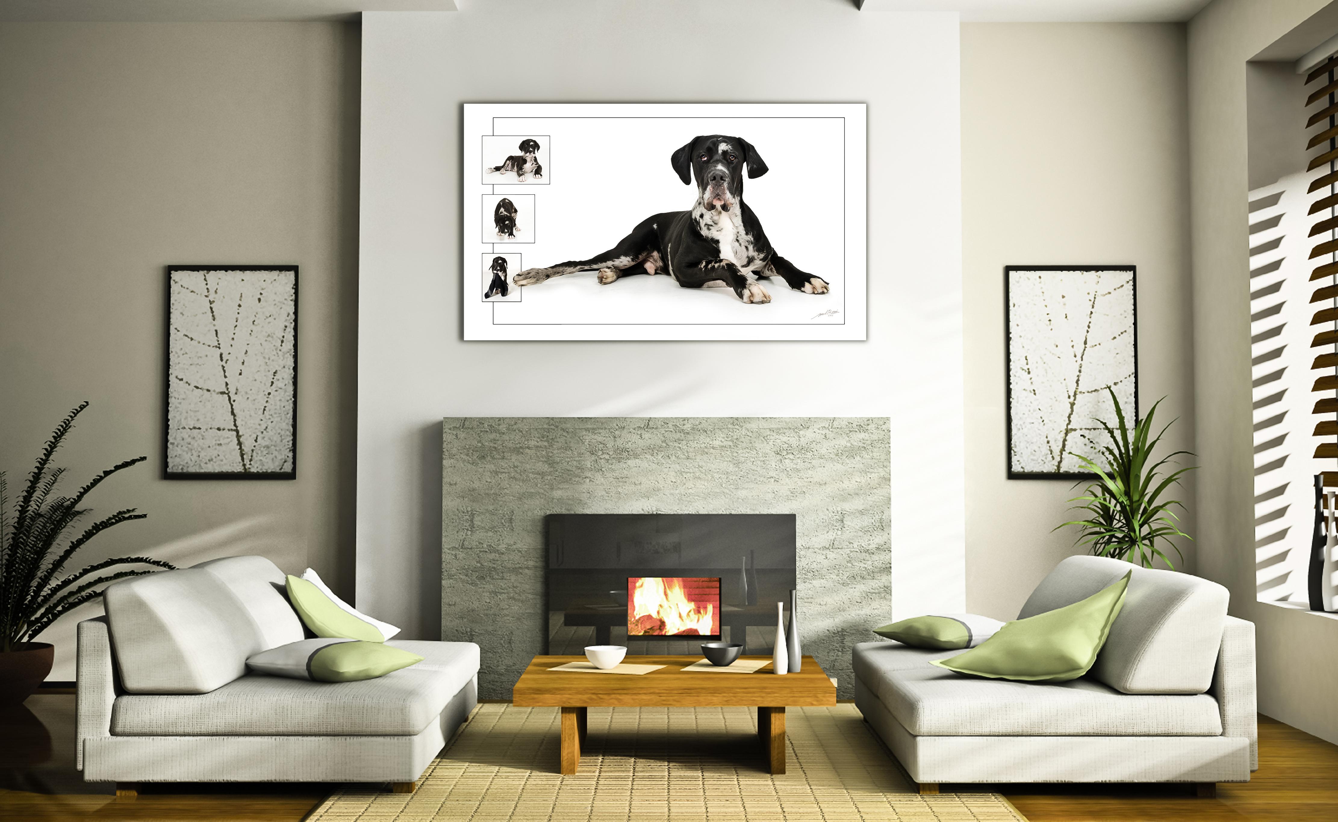 symetry-living-room-designroomset
